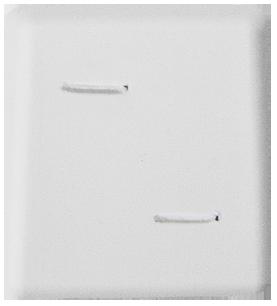 #S103 :: Stickpin Special Oro-Lite™ Pad